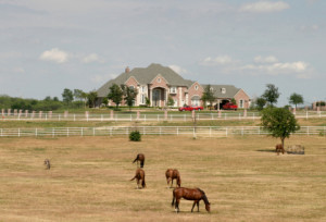 Grand Estate With Horses